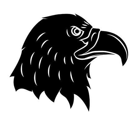 corvus: Crow Illustration