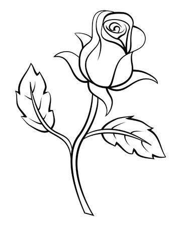 preto: Rose Flor