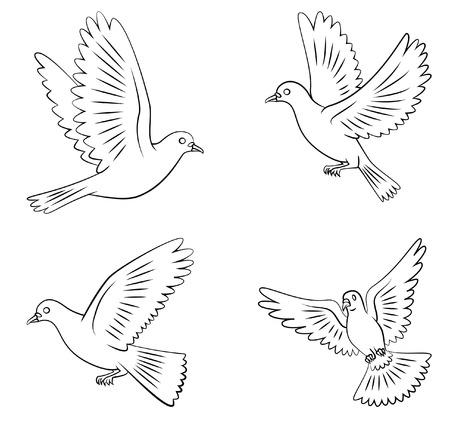 paloma volando: Dove Set Flying Colecci�n