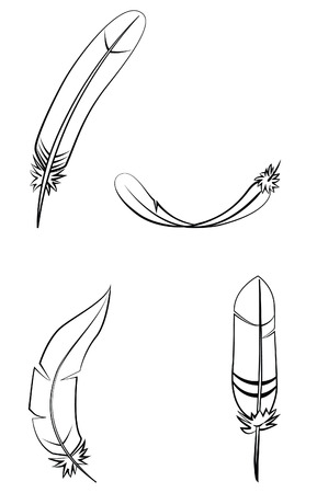 allegory: Feather Set Collection