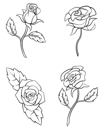 rosas negras: Set Flor Rose Collection Vectores