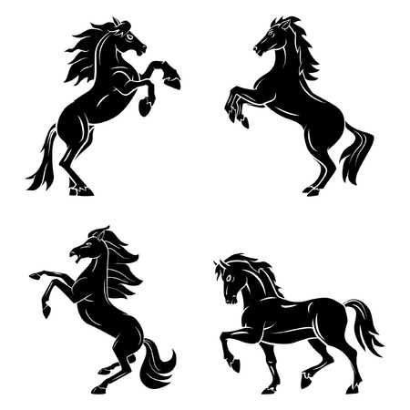 riding horse: Tattoo Symbol Of Horse Tattoo Illustration
