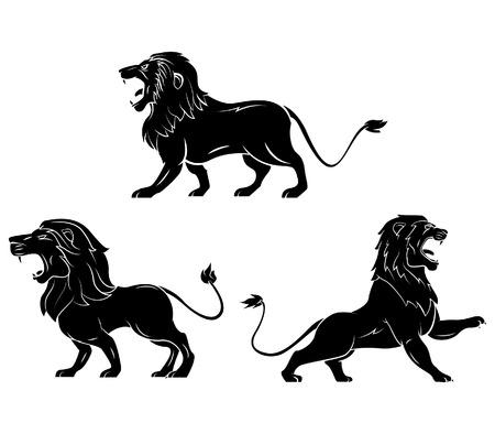 Tattoo Symbol Of Lion Vector