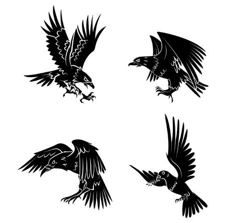flights: Eagle,Dove and Raven Illustration