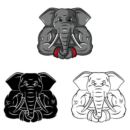 Coloring book Elephant cartoon character Vector