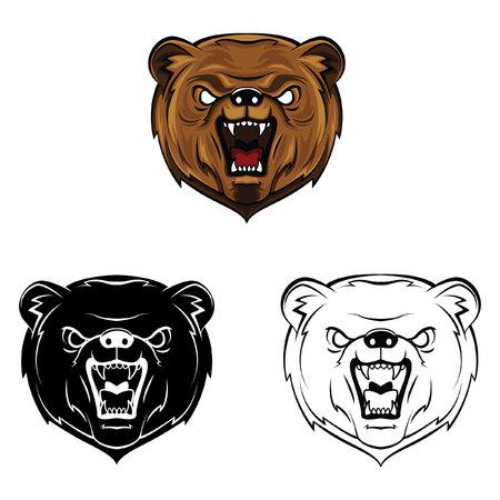 Coloring book Bear cartoon character - vector illustration .EPS10 Vector