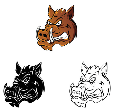 Coloring book Wild Boar Head cartoon character