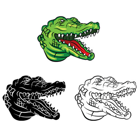 Coloring book Crocodile Head cartoon character Vector