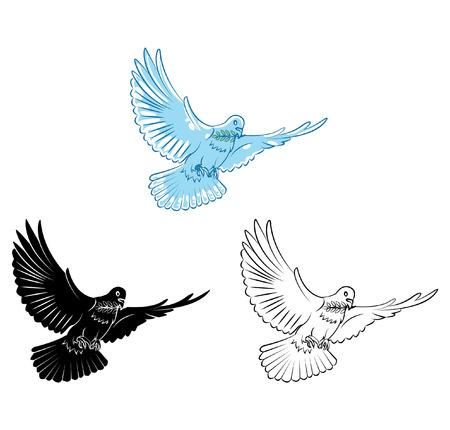 Libro para colorear dibujos animados Dove Vectores