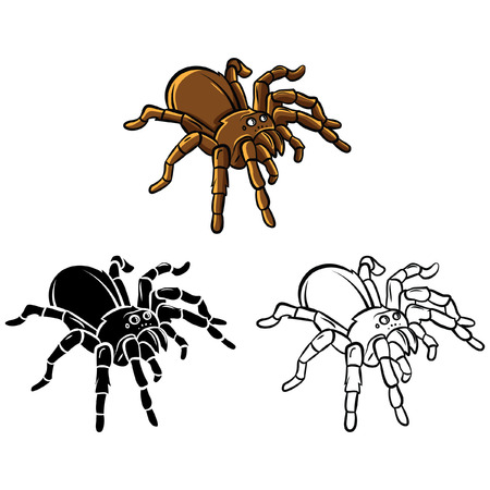 Coloring book Tarantula cartoon character Vector