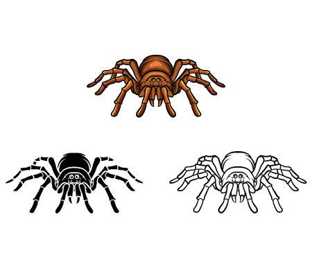 tarantula: Coloring book Tarantula cartoon character