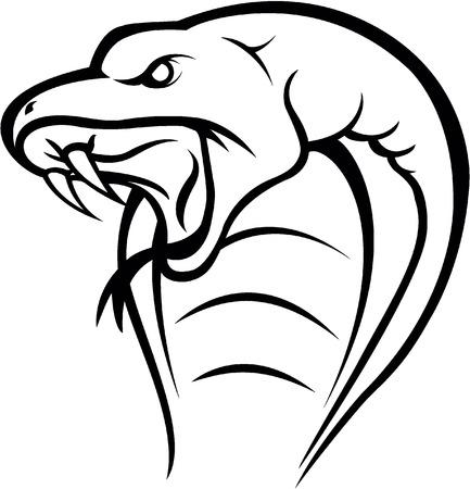 king cobra: Cobra snake head