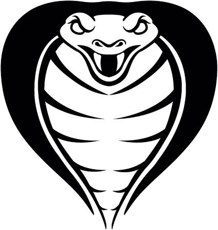 cobra snake: Cobra snake head