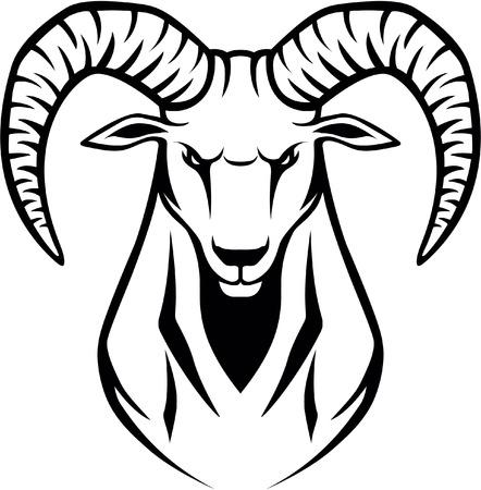 wilde Ibex