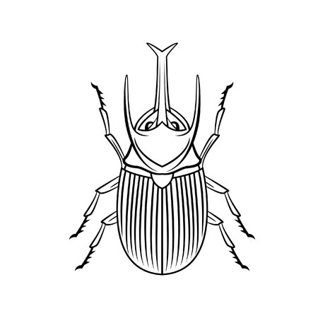 hercules: beetle symbol illustration