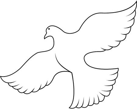 holy leaves: Peace dove illustration Illustration