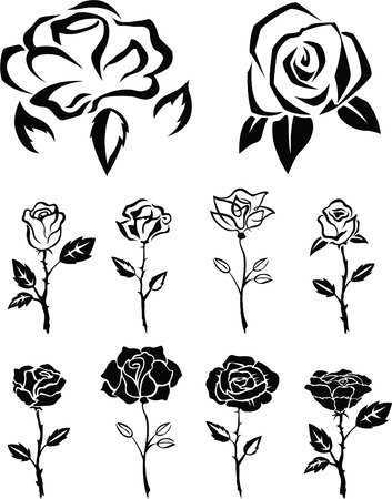 Rose Banque d'images - 46370453