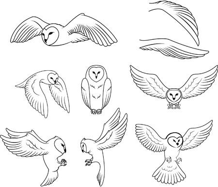 cute tattoo: Owl Illustration
