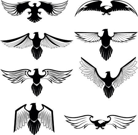 halcones: símbolo del águila