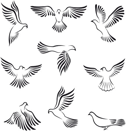 white flight feathers: Dove peace Illustration