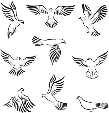 dove in flight: Dove peace Illustration
