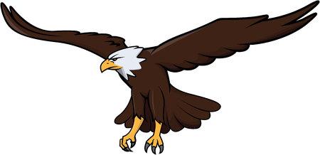 aguila volando: Ilustración de diseño de Eagle Vectores