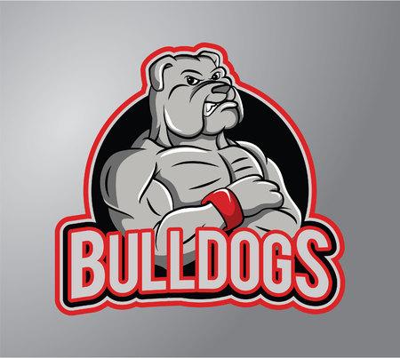english bulldog puppy: Bulldog