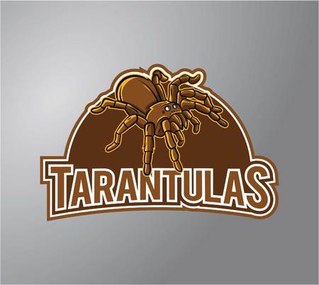 tarantula: Tarantula Illustration Design symbol Illustration
