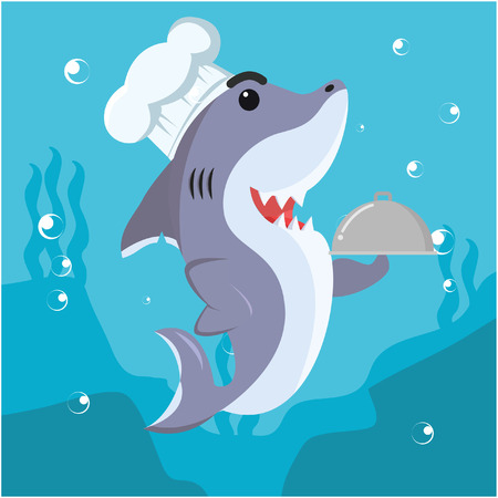 cheff: shark cheff vector illustration design