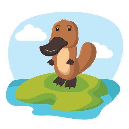 platypus: platypus character vector illustration design