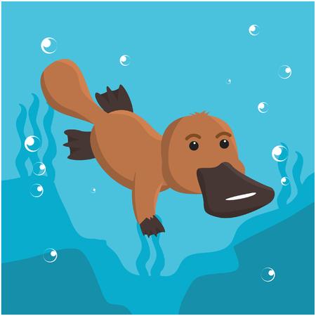 platypus: platypus swimming vector illustration design