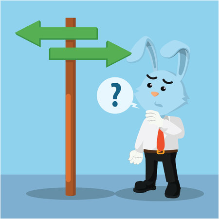 choosing clothes: business rabbit confused choosing a way