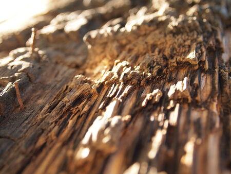 Worn Wood Grain Banco de Imagens
