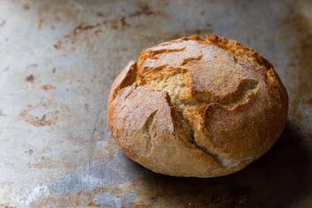 crusty: round fresh crusty bread bun on steel plate