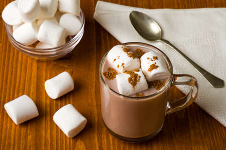 hot cocoa with marshmallow in glass mug