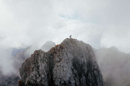 shrouded: Majestic landscape with traveler on top of mountain shrouded in fog