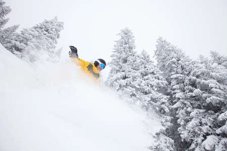 deep powder snow: Snowboard freerider on ski slope in deep powder against beautiful trees in snow in  Alps. Focus on moving object