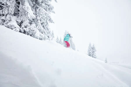 backcountry: Back view of female snowboarder having fun in deep backcountry powder snow during winter blizzard in Alps - extreme sports concept Stock Photo