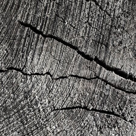 Cracked wooden surface as a background photo