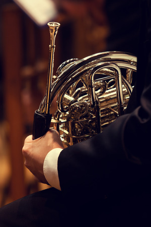 Musician holding a french horn photo