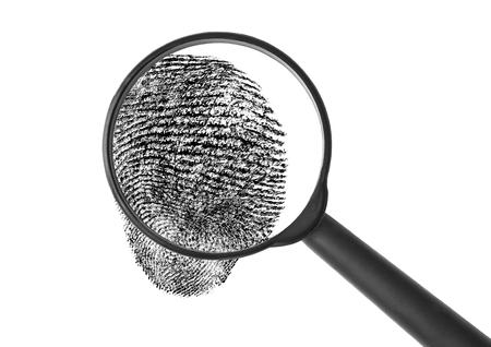 fingerprinting:  Enlarged fingerprint Stock Photo