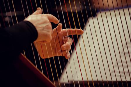 arpa: Las manos de una mujer tocando el arpa Foto de archivo