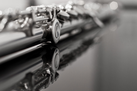 flute key: Flute fragment in black and white