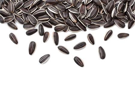Sunflower seeds on white background Reklamní fotografie