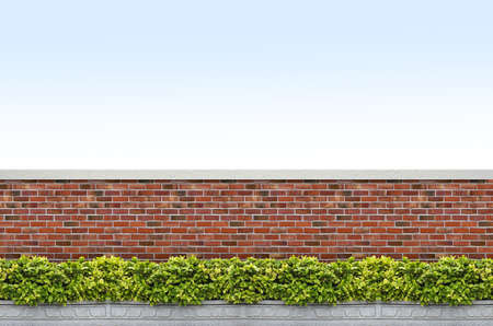 brick wall background: shrubs and brick fence on blue sky background Stock Photo