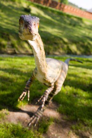 Jurrasic Park - Satz von Dinosaurier - Coelophysis bauri Standard-Bild - 991203