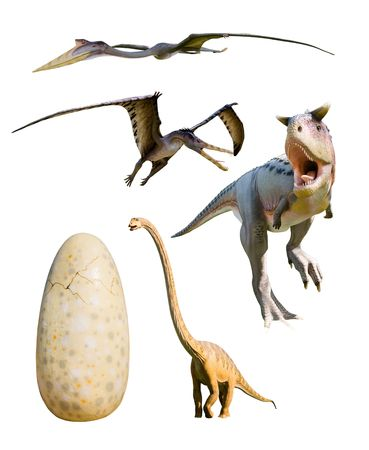 four most popular dinosaurs and an huge egg: Ceratosaurus nasicornis, Cearadactylus atrox, Mamenchisaurus constructus, Ceratosaurus Nasicornis - isolated on white with clipping paths Standard-Bild