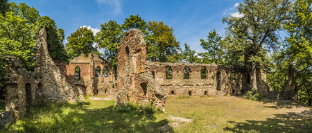 Ruins of old Ksiaz castle