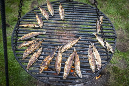 whitefish during frying on fire Standard-Bild