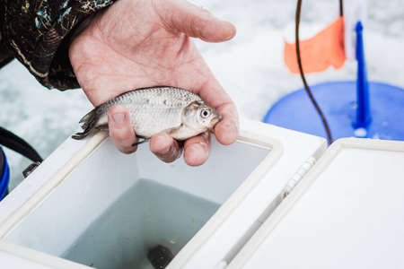 Male hands holding a bait for winter fishing